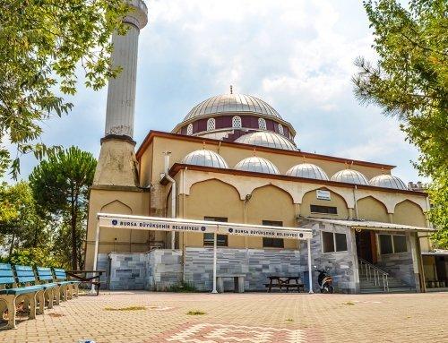 Cami, Bursa